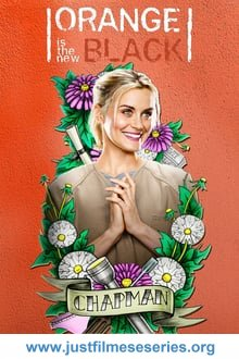 Baixar Orange Is the New Black 1ª Temporada (2013) Dublado via Torrent