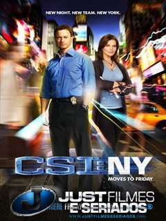 Download Seriado CSI: New York – 8x11 - Who's There